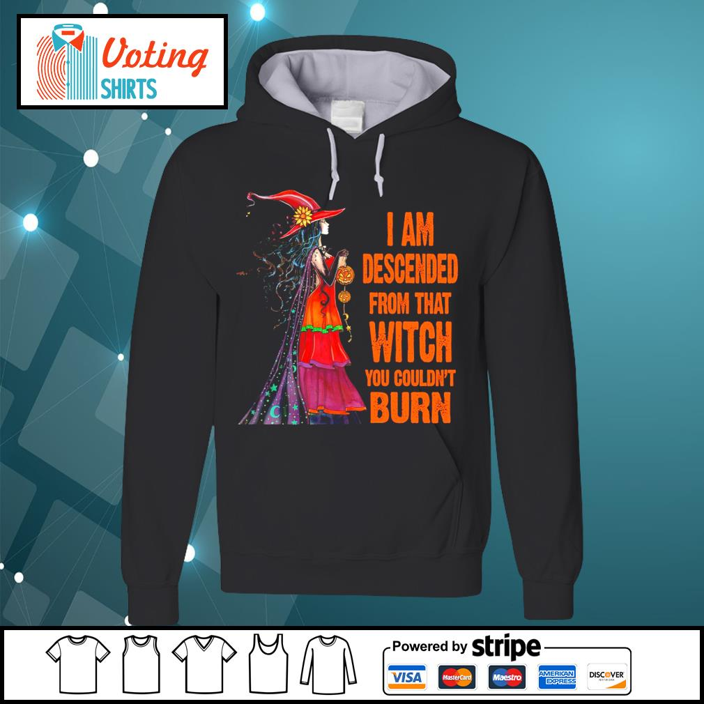 I am descended from that witch you couldn't burn s hoodie